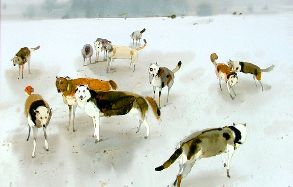 Картинка Собаки, 2003г, АРУШ ВОЦМУШ