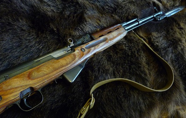 Картинка оружие, шкура медведя, скс
