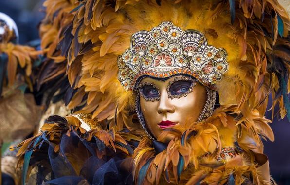 Фото обои перья, маска, Венеция, маскарад