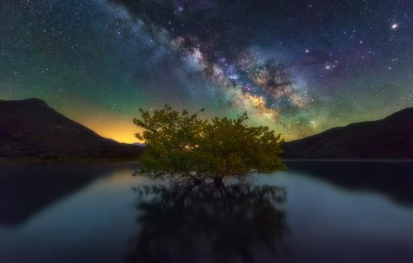 Картинка небо, звезды, горы, ночь, озеро, дерево, млечный путь