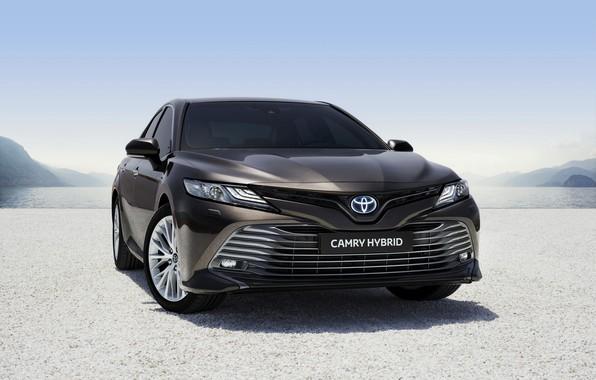 Картинка Toyota, Hybrid, Camry, 2019, Toyota Camry Hybrid 2019