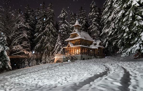 Картинка зима, лес, снег, деревья, пейзаж, ночь, природа, дом, ели, Польша, особняк