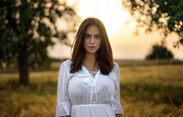 Картинка поле, трава, взгляд, деревья, природа, фон, модель, портрет, макияж, платье, прическа, шатенка, красотка, в белом, ...