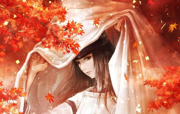 Картинка шапка, покрывало, длинные волосы, японская одежда, кленовые листья, жрец, Fujiwara no Sai, Hikaru no Go, …
