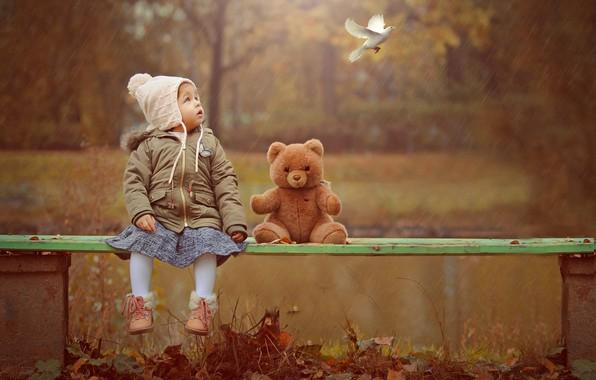 Картинка осень, природа, дождь, птица, игрушка, голубь, мишка, девочка, лавка, малышка, ребёнок, Ahmed Hanjoul