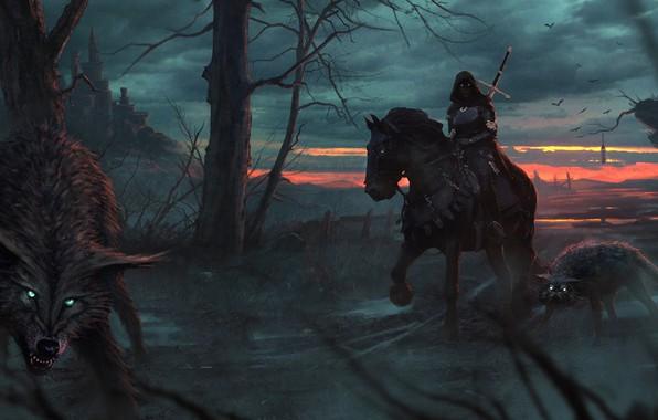 Картинка дорога, лес, девушка, деревья, ночь, хищники, фэнтези, арт, капюшон, волки, art