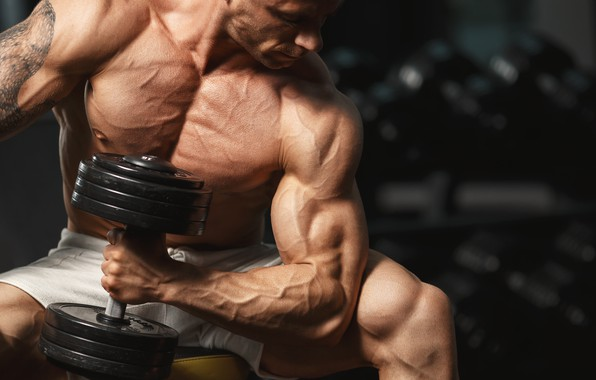 Картинка поза, тату, muscle, мышцы, pose, гантели, бицепс, gym, бодибилдер, dumbbells, bodybuilder, спорт зал