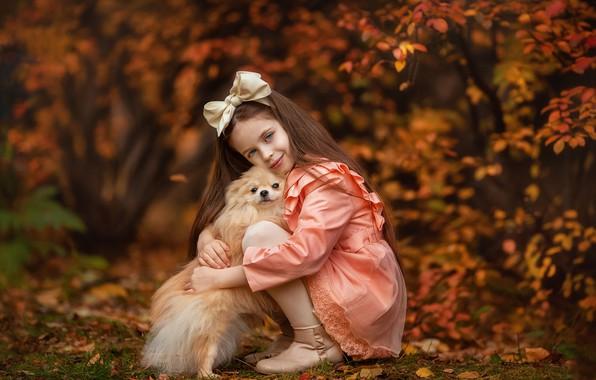 Картинка осень, взгляд, настроение, собака, дружба, девочка, бант, друзья, длинные волосы, боке, шпиц, Анастасия Бармина