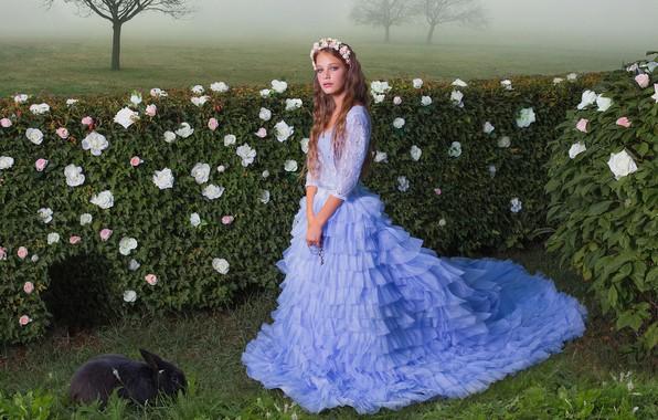 Картинка розы, кролик, платье, девочка