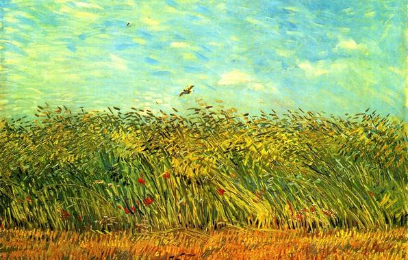 Картинка небо, цветы, птица, колосья, Vincent van Gogh, Wheat Field with a Lark