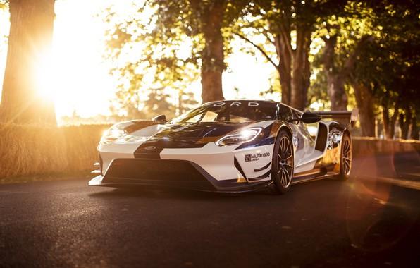 Картинка машина, солнце, Ford, Ford GT, спорткар, Mk II