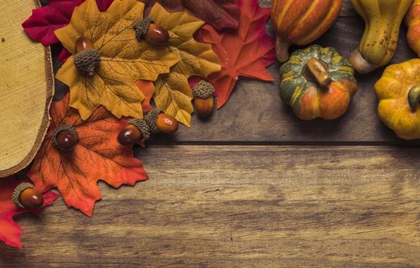 Картинка осень, листья, фон, дерево, доски, colorful, тыква, клен, wood, background, autumn, leaves, осенние, pumpkin, maple