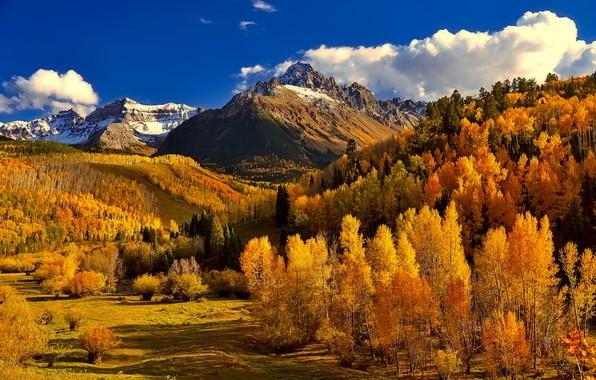 Картинка осень, лес, небо, облака, горы, Колорадо