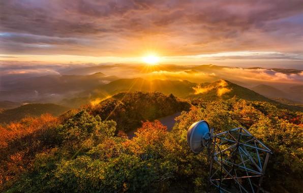 Картинка осень, лес, солнце, свет, деревья, горы, холмы, листва, антенна