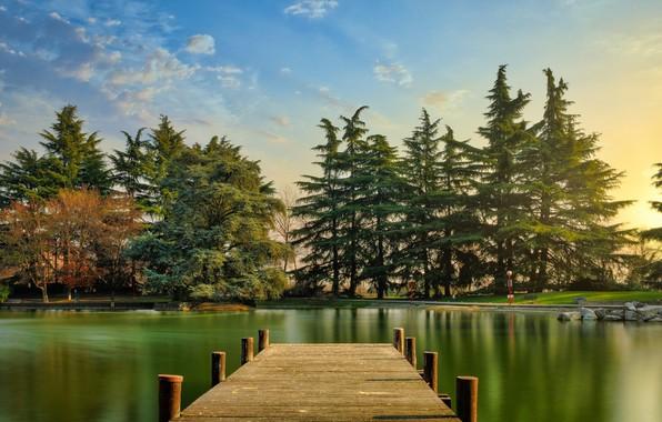 Картинка лес, озеро, мостик