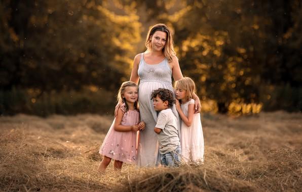 Картинка лето, природа, жизнь, семья