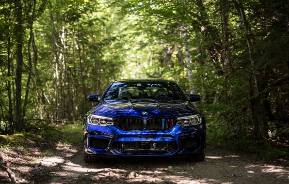 Картинка BMW, Blue, Front, Forest, Sight, F90