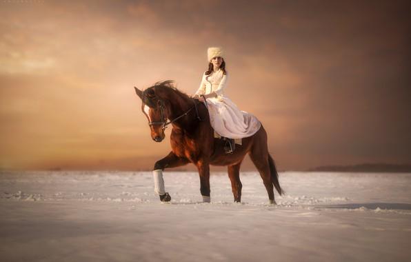 Картинка зима, девушка, снег, лошадь, всадница, Pawel Szamreta