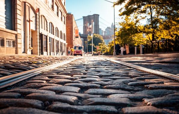 Картинка city, USA, road, trees, bridge, New York, NYC, park, New York City, morning, street, people, …