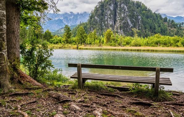 Картинка зелень, лес, облака, деревья, горы, скамейка, скалы, берег, речка