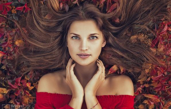 Картинка осень, взгляд, листья, девушка, лицо, волосы, портрет, руки, декольте, плечи, Wojtek Polaczkiewicz