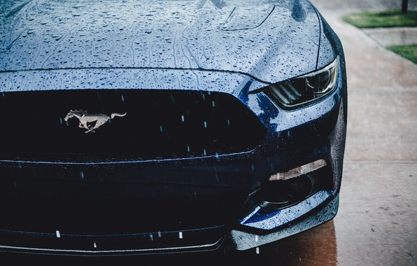 Картинка Ford Mustang, muscle car, water drops