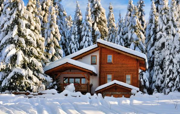 Картинка зима, лес, снег, деревья, пейзаж, природа, дом, зимний, елки, house, forest, коттедж, landscape, nature, beautiful, …