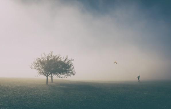 Картинка деревья, человек, воздушный змей, trees, man, kite, Uschi Hermann
