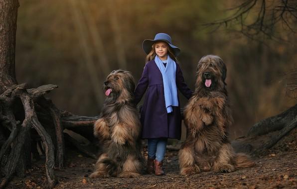 Картинка собаки, шляпа, шарф, девочка, Анастасия Бармина