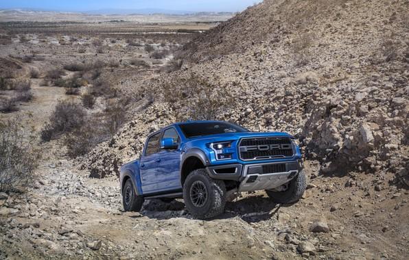 Картинка Ford, Raptor, F-150, Бездорожье, 2019, Ford F-150 Raptor