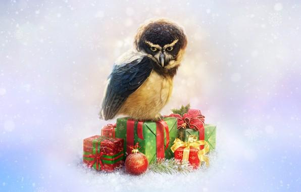 Картинка Сова, Птица, Снег, Новый Год, Стиль, Украшение, Праздник, Арт, Art, Style, Snow, New Year, Owl, …