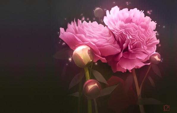 Картинка цветы, арт, art, пион, Александра Хитрова, GaudiBuendia