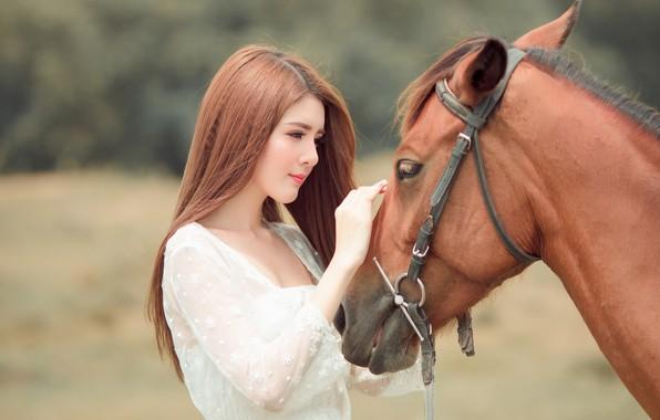 Картинка взгляд, морда, девушка, природа, лицо, фон, друг, конь, милая, лошадь, портрет, руки, дружба, красавица, профиль, ...