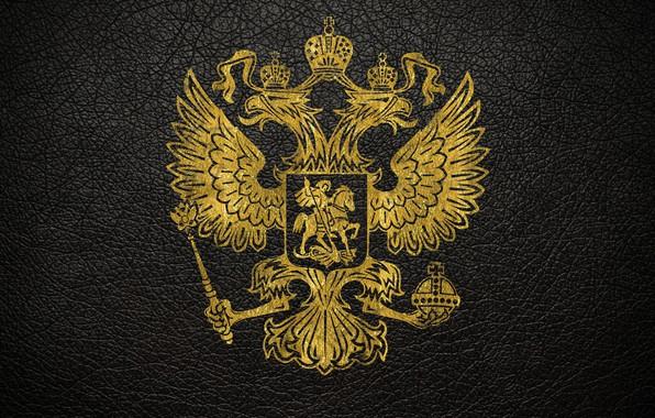 Картинка кожа, золотой, герб, россия