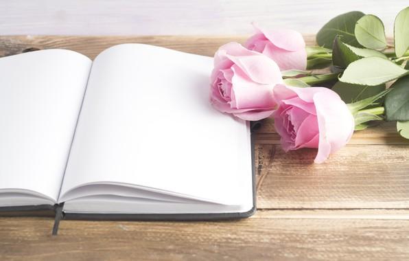 Картинка розы, книга, розовые, бутоны, pink, flowers, book, roses