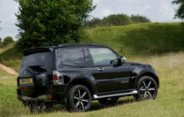 Картинка чёрный, Mitsubishi, вид сбоку, Pajero, SUV, Shogun, 2014, Montero, SWB Barbarian, трёхдверный