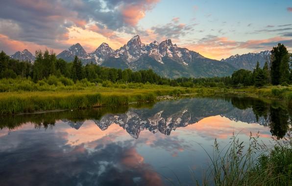 Картинка лес, лето, небо, трава, облака, деревья, пейзаж, горы, отражение, берег, вершины, красота, вечер, ели, Вайоминг, …