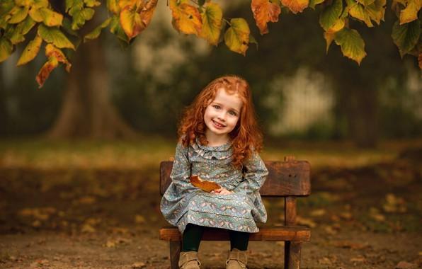 Картинка осень, взгляд, листья, ветки, улыбка, настроение, девочка, рыжая, кудри, рыжеволосая, малышка, скамеечка