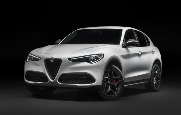Картинка Alfa Romeo, кроссовер, Stelvio, 2019, Stelvio Ti