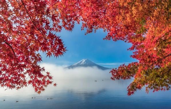 Картинка осень, листья, деревья, озеро, гора, Фудзи, trees, autumn, mountain, lake, leaves, Fuji, SUNTARARAK SAOWANEE
