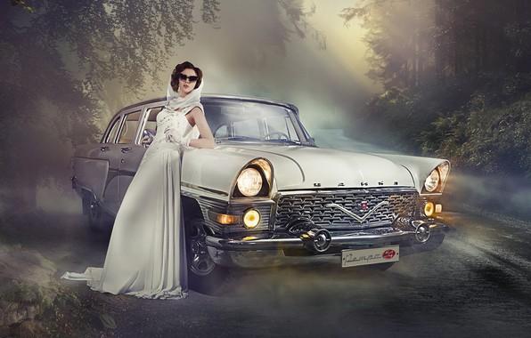 Картинка дорога, авто, девушка, поза, чайка, платье, очки