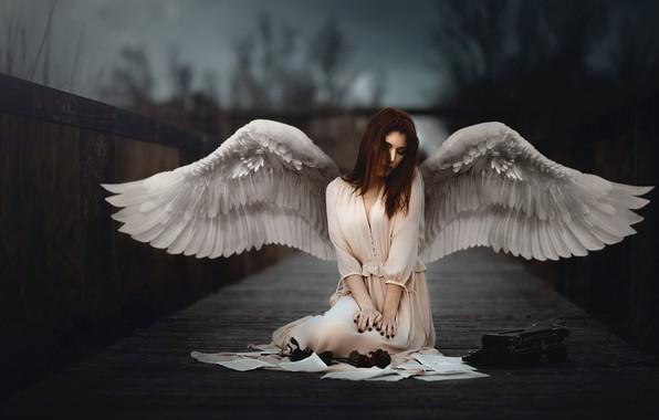 Картинка девушка, крылья, ангел