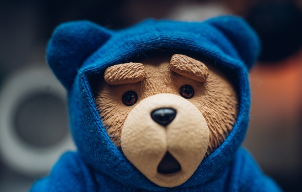 Картинка игрушка, медведь, капюшон, медвежонок
