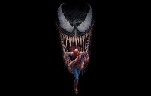 Картинка art, comics, Venom, Peter Parker, Spider man, Eddie Brock