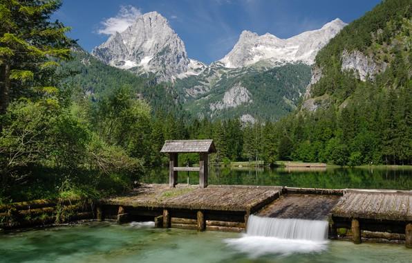 Картинка лес, горы, озеро, Австрия, Austria, Alps, Upper Austria, Верхняя Австрия, Schiederweiher Lake, Озеро Шидервайер, Хинтерштодер, …