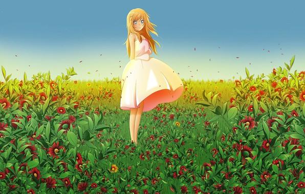 Картинка лето, букет, девочка, голубые глаза, одна, длинные волосы, цветочное поле, сарафан, miyazono kaori, твоя апрельская …