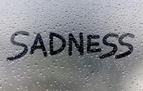 Картинка стекло, вода, капли, дождь, окно, rain, sadness, window, drops