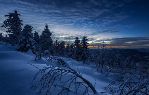 Картинка зима, небо, снег, деревья, пейзаж, горы, ветки, природа, рассвет, звёзды, утро, Швейцария, ели, Daniel Vogelbacher
