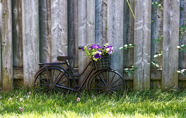 Картинка wallpaper, grass, bicycle, bike, wood, flowers, basket, lawn, vintage style