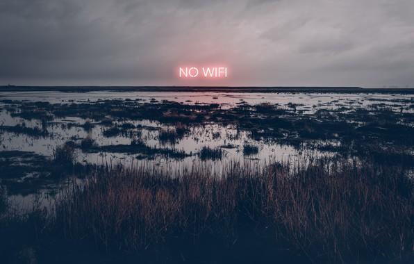 Картинка ночь, болото, no wifi